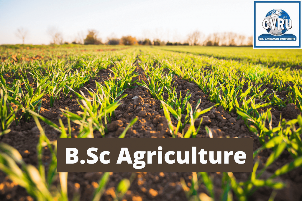 study in agriculture